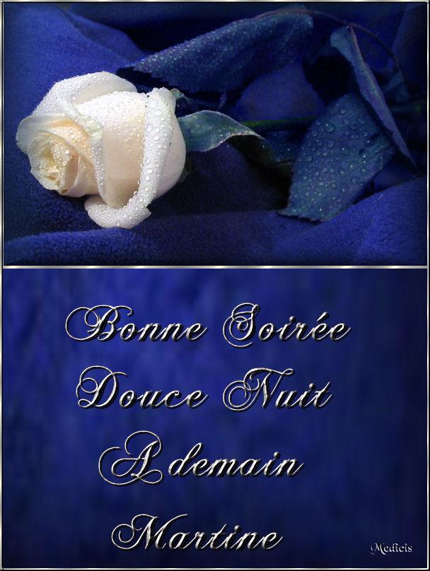 BONNE SOIREE DE MERCREDI Top-rose-blanche-444f160