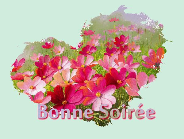 BONNE SOIREE DE SAMEDI 55ae7398-43ebbbe