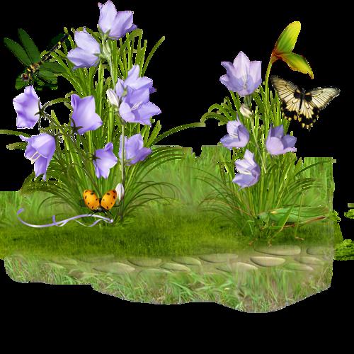 Remedios Varios Para Los Hemorroides. 0_989ff_12da0acb_l.jpg-449f4f3